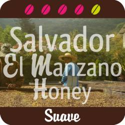 Salvador El Manzano bourbon jaune Honey